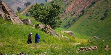 دهدز شهرستان شد/دزپارت بیستونهمین شهرستان خوزستان