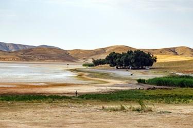 نمایی از تالاب قوری گول که کاهش حجم آب آن از خطوط آب در ساحل آن مشخص است.