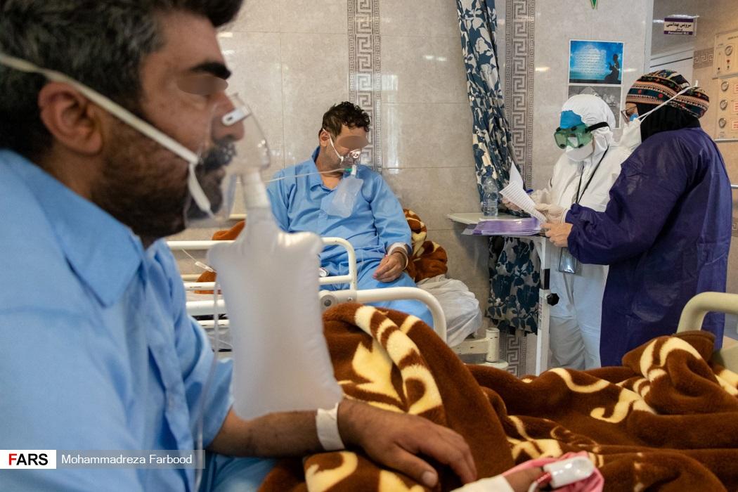 دکتر متخصص داخلی و مسئول بخش حاد یک در حال ویزیت روزانه بیمار کرونایی بیمارستان حضرت علی اصغر(ع) شیراز
