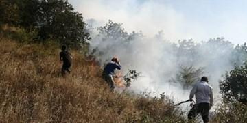 اقدامات حفاظتی در جنگلها و مراتع کشور تشدید میشود