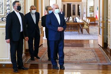 دیدار ظریف با نماینده ویژه دبیرکل سازمان ملل در امور افغانستان