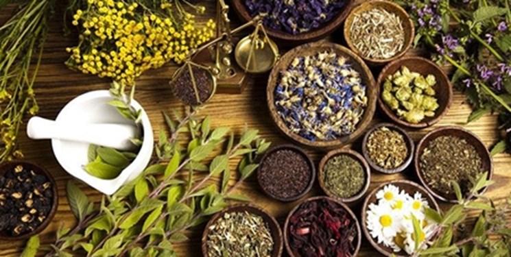توسعه فناوری و فرآوری بذر و اندام رویشی در ۲۴ گونه از گیاهان دارویی