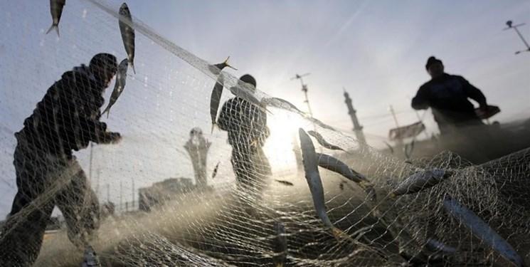 پیش بینی تولید بیش از ۳۷۰۰ تن انواع ماهیان بومی در دریاچه پشت سد ارس