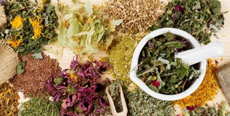 ۱۰ گام بلند برای استفاده از ظرفیتهای ملی در حوزه گیاهان دارویی و طب سنتی