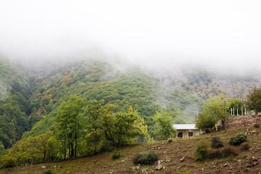 نمايان شدن آتار فصل پاييز در ارتفاعات كوهستان