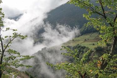 هجوم مه در طبيعت كوهستان