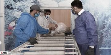 عضو شورای شهر مشهد: بار عمده ویروس کرونا روی دوش کارکنان سازمان فردوسهاست