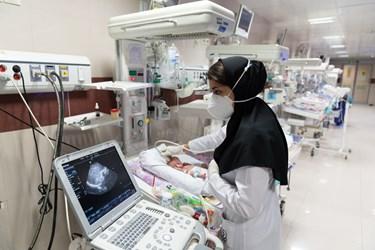 دکتر بخش مراقبت های ویژه نوزادان ( NICU 4 ) از سر یا مغز قل پنجم (  قل E  )  سونوگرافی می گیرد./ بیمارستان حضرت زینب(س) شیراز