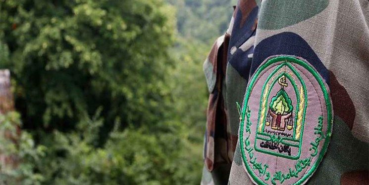قدردانی از جنگلبانان در سازمان جنگلها