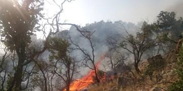 آتش در کوه اشکر پیچاب باشت مهار شد