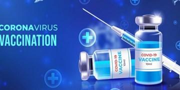 بهترین «واکسن» کدام است؟