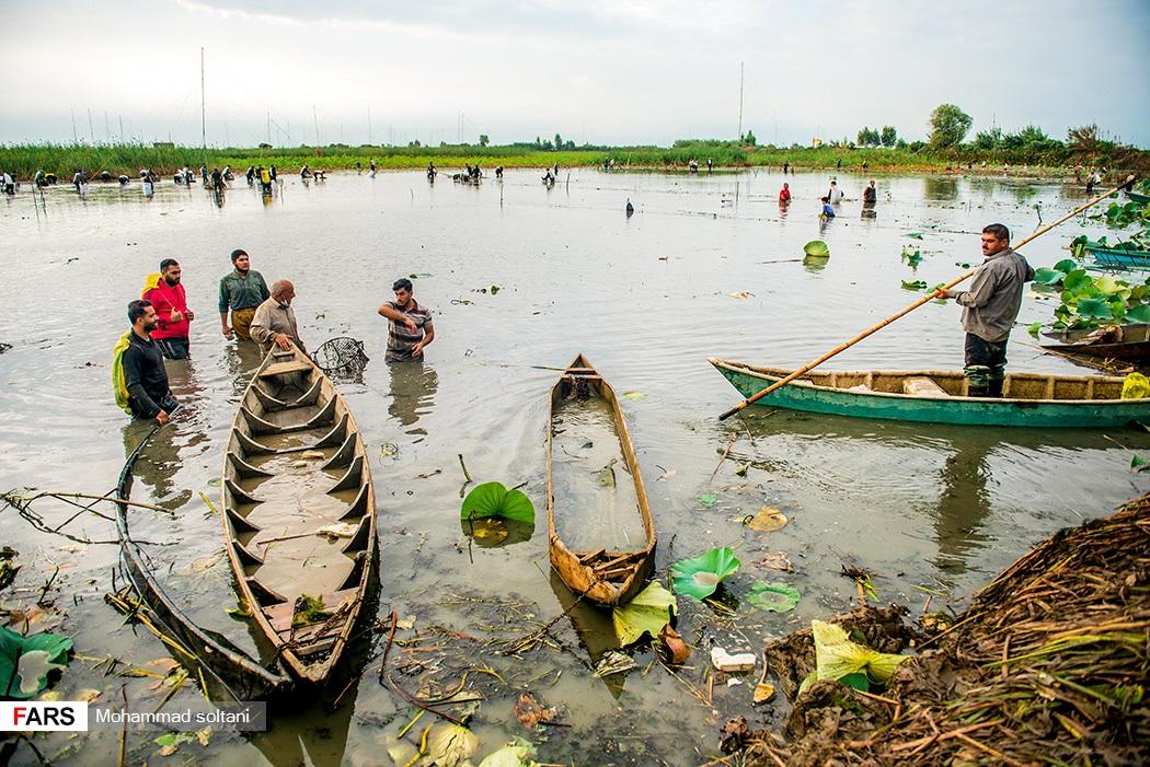 گروهی از مردم با ایجاد دام به صید ماهی میپردازند