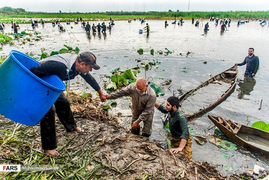 همکاری و کمک روستایان به یک دیگر