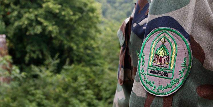 جنگل خط قرمز دستگاه قضاست/مجازات سخت در انتظار ضاربان جنگلبانان گیلانی