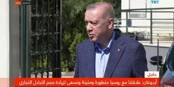 اردوغان: آمریکا بیش از حد انتظار از تروریستها حمایت میکند