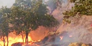 تلاش بر ای مهار آتش سوزی جدید در کوه دیل گچساران  ادامه دارد