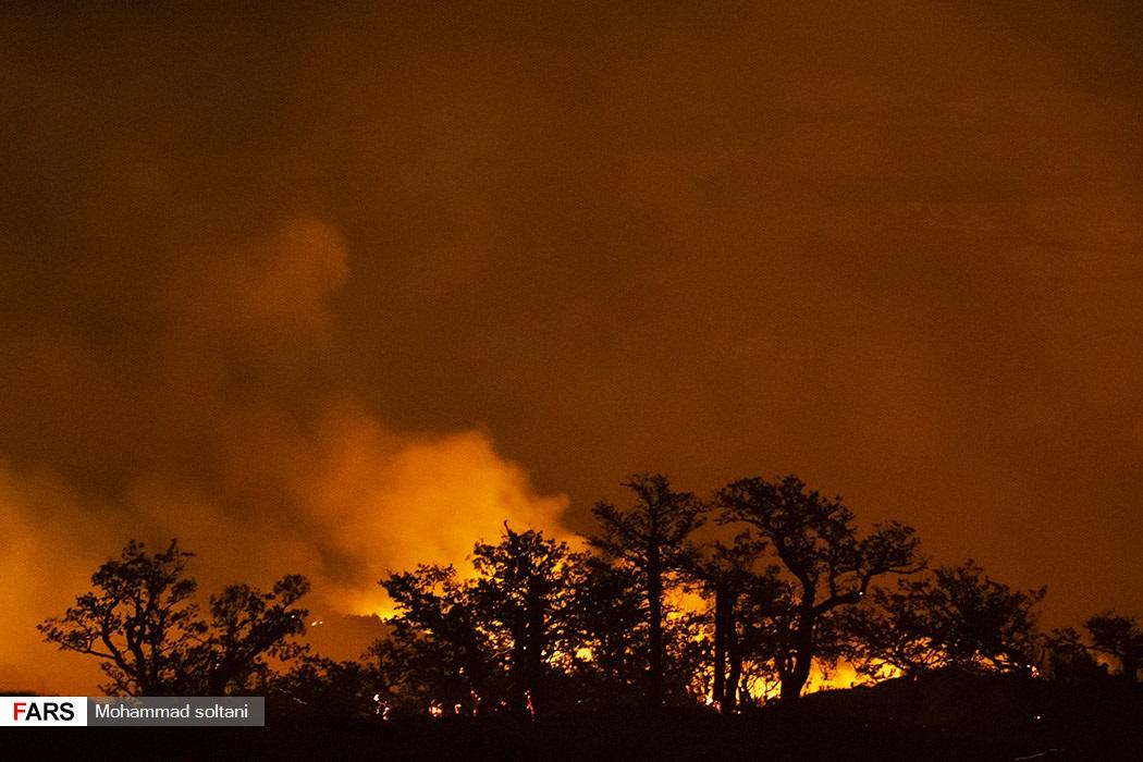 آتش بار دیگر بلای جان جنگل های کردکوی شد