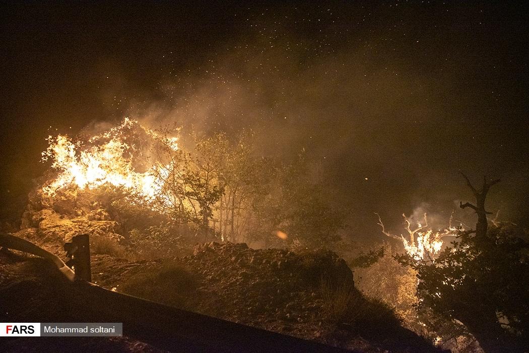 آتش بار دیگر بلای جان جنگلهای کردکوی شد