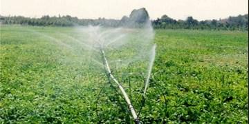 مجهز بودن ۷۸ هزار هکتار اراض کشاورزی به سیستم نوین آبی/ کسب رتبه نخست تهران در راندمان مصرف آب