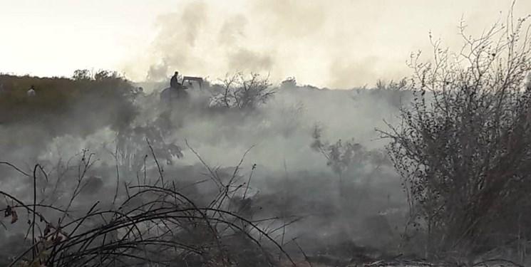 سوختن ۲۹۳ هکتار از میانکاله از ابتدای امسال تاکنون