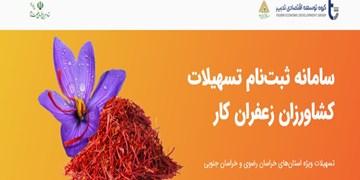 حمایت گروه توسعه اقتصادی تدبیراز زعفرانکاران  استانهای خراسان جنوبی و رضوی