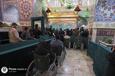 دست زائران به ضریح امام رضا(ع) رسید