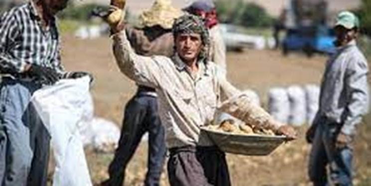ستاد اجرایی درصدد ریشهکن کردن بیکاری در روستاها است/ پرداخت تسهیلات اشتغال زایی هدفمند