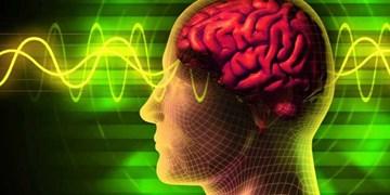 شگردهای رسانهای در علوم شناختی| تکنیک 44: گنبد اطلاعات غلط ـ تصویر ذهنی زیبا