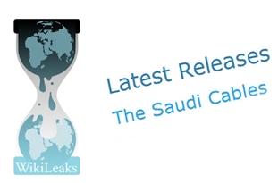 Saudileaks 31: Envoy Asks Riyadh to Act to Stop Djibouti's Tendency towards Iran