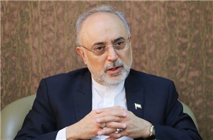Nuclear Chief: Iran Supportive of Logic, Against Bullying