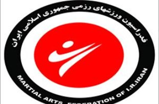 Iranian Athlete Ranks 1st in Int'l Vovinam Championships
