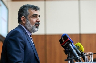 AEOI: New US Sanctions Unable to Stop Iran's N. Progress