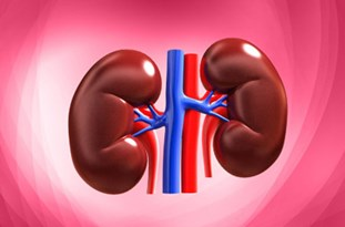 8 Foods that Actually Damage Your Kidneys