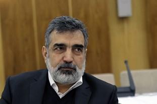 Iran's Atomic Energy Organization in Frontline of Anti-Coronavirus Campaign