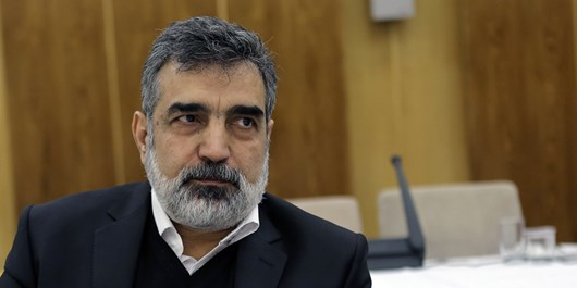 AEOI Spokesman: Iran's R&D Projects on Good Track