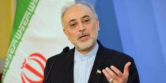 Iran Asks IAEA Not to Succumb to Pressures by Enemy Spy Agencies