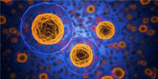 Iranian Researchers Develop Nano Biosensor to Find Cancer Cells
