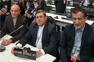 Iran Discusses Climate Change Issues in Madrid Conference