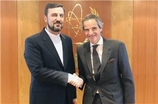 Envoy: US, Israel Attempting to Distort Iran-IAEA Constructive Ties