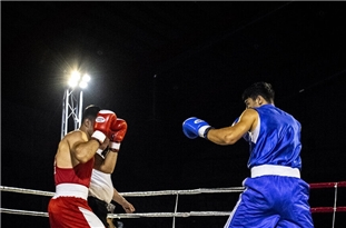 Iranian Boxers Win 3 Silver, 4 Bronze Medals in Turkey
