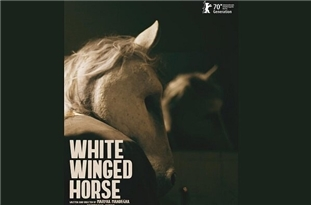 Iran's Movie 'White Winged Horse' to Compete at Berlinale's Generation