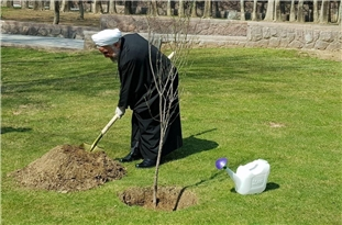 Iran's President Rouhani Marks National Arbor Day with Planting Sapling