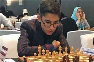 Young Iranian Chess Player Granted Grandmaster Title