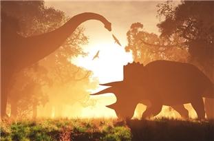 Days Half-Hour Shorter 70 Million Years Ago