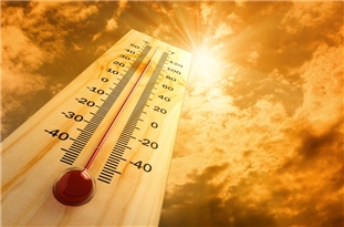 Heat Stress and Global Warming