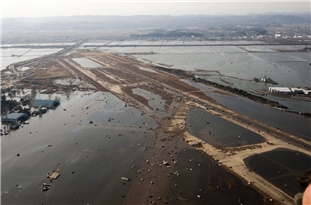 Shifts in Deep Geologic Structure May Have Magnified Great 2011 Japan Tsunami