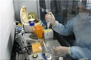 Iran to Finalize Studies on Effective Anti-Coronavirus Medicine