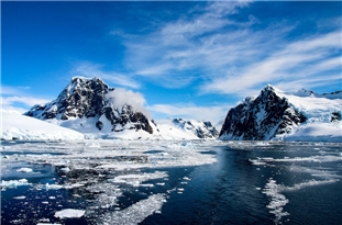 90-Million-Year-Old Rainforest Near South Pole
