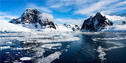 90-Million-Year-Old Rainforest Near South Pole