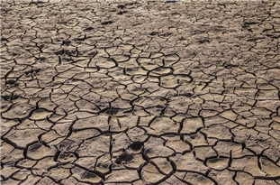 Climate-Driven Megadrought in Western US